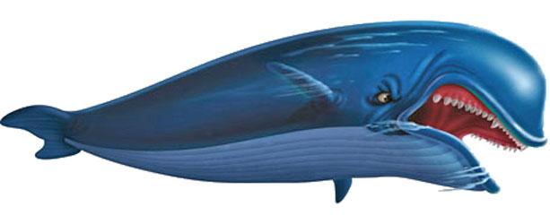 Baleia Azul