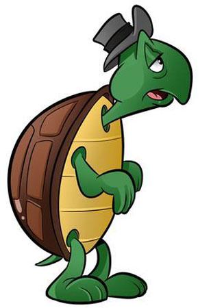 Cecil Turtle